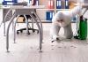 5 Best Pest Control Companies in San Antonio