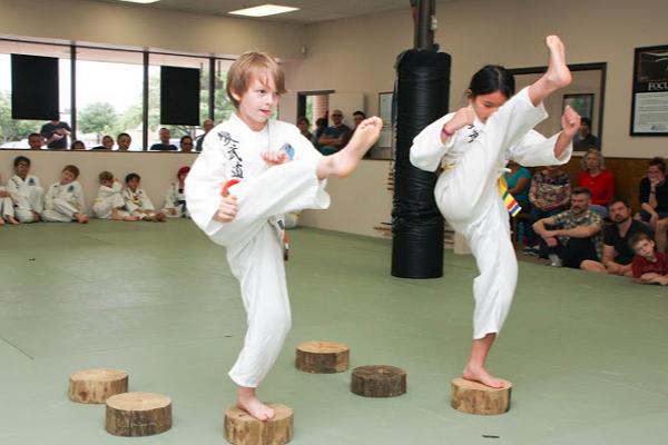 Traditional Martial Arts Academy