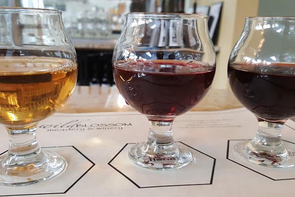 Wild Blossom Meadery & Winery
