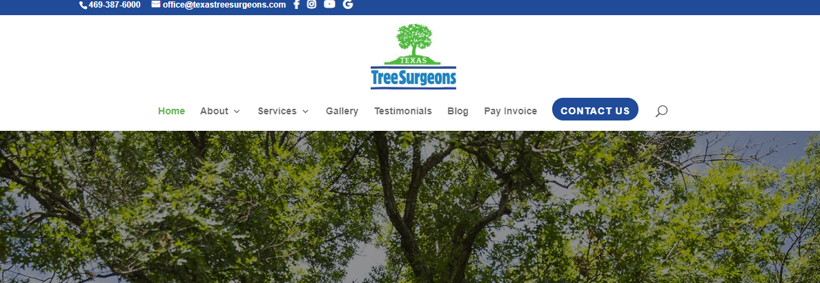5 Best Tree Services in Dallas4