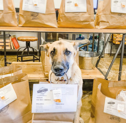 Pet Wants - The Urban Feed Store
