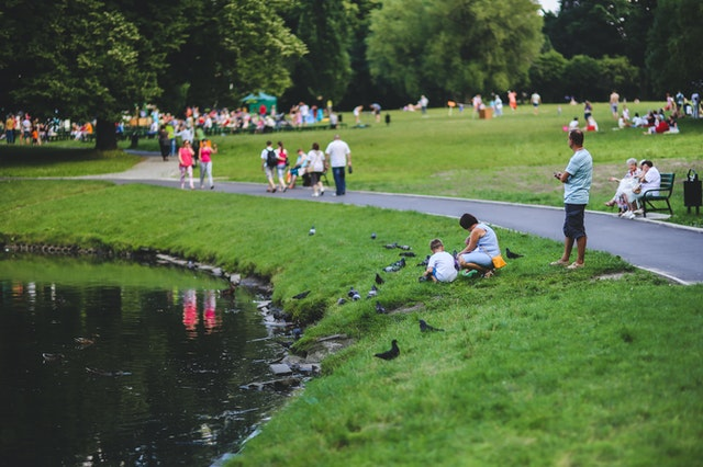 5 Best Parks in Austin