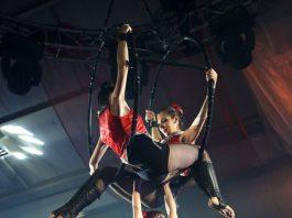 5 Best Circuses in Phoenix