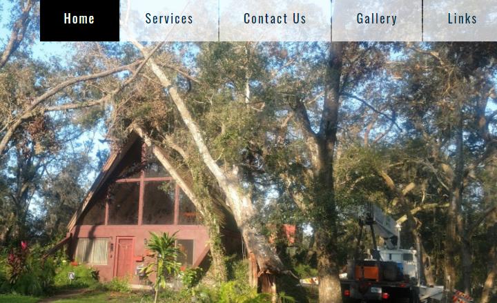 5 Best Arborists in Jacksonville1