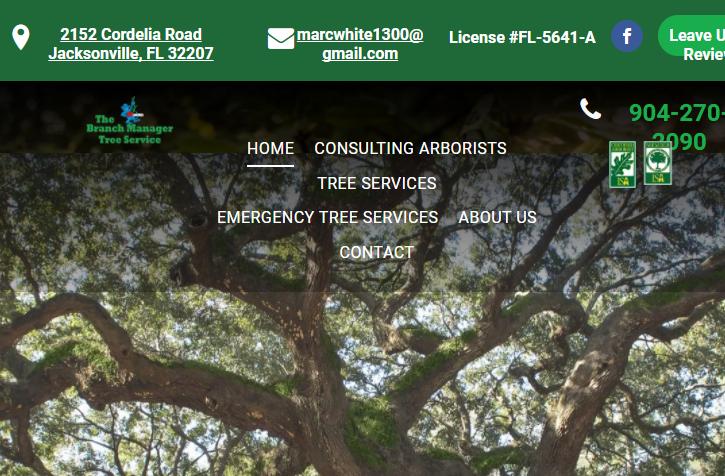 5 Best Arborists in Jacksonville3