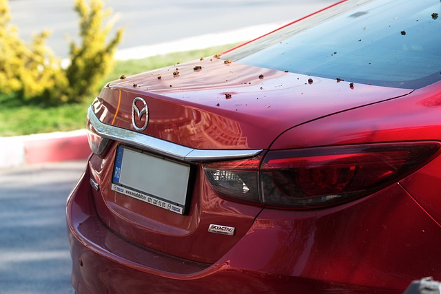 5 Best Mazda Dealers in Chicago