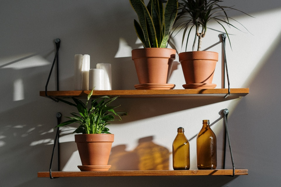 A shelf with plants and two glass amber bottles bought online.
