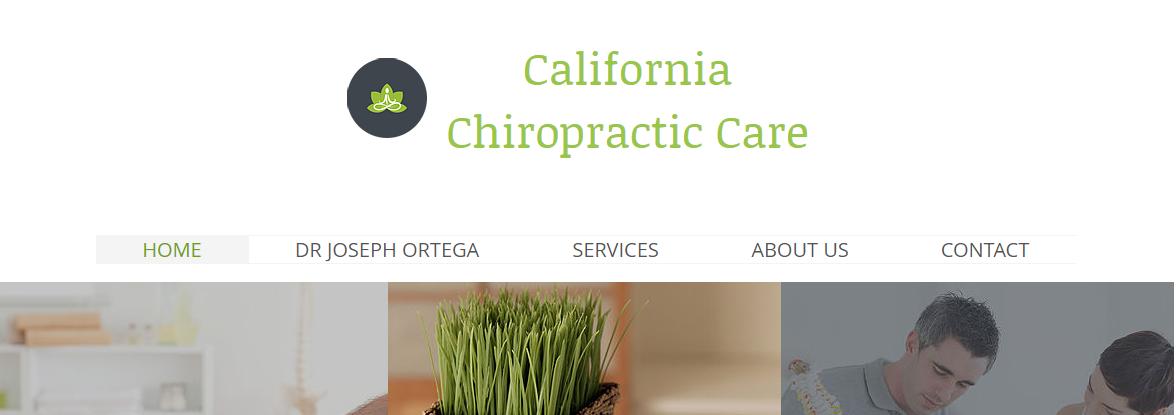 5 Best Chiropractors in San Diego5