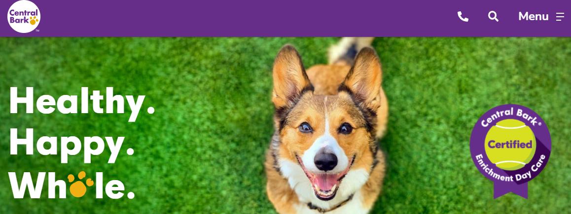 5 Best Doggy Day Care Center in Philadelphia 2