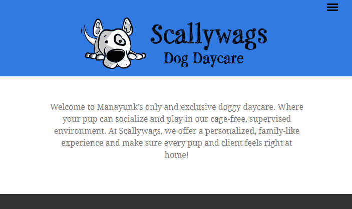 5 Best Doggy Day Care Center in Philadelphia 4