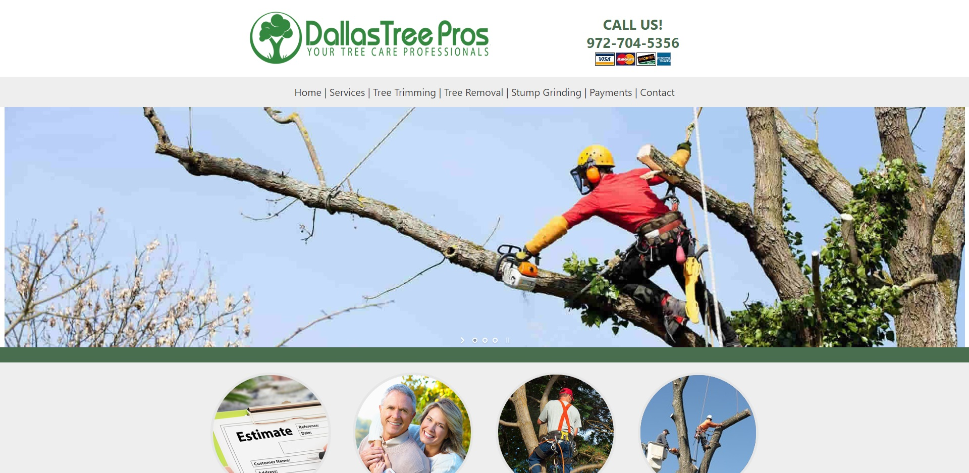 The Best Arborists in Dallas