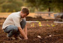 5 Best Gardeners in Columbus