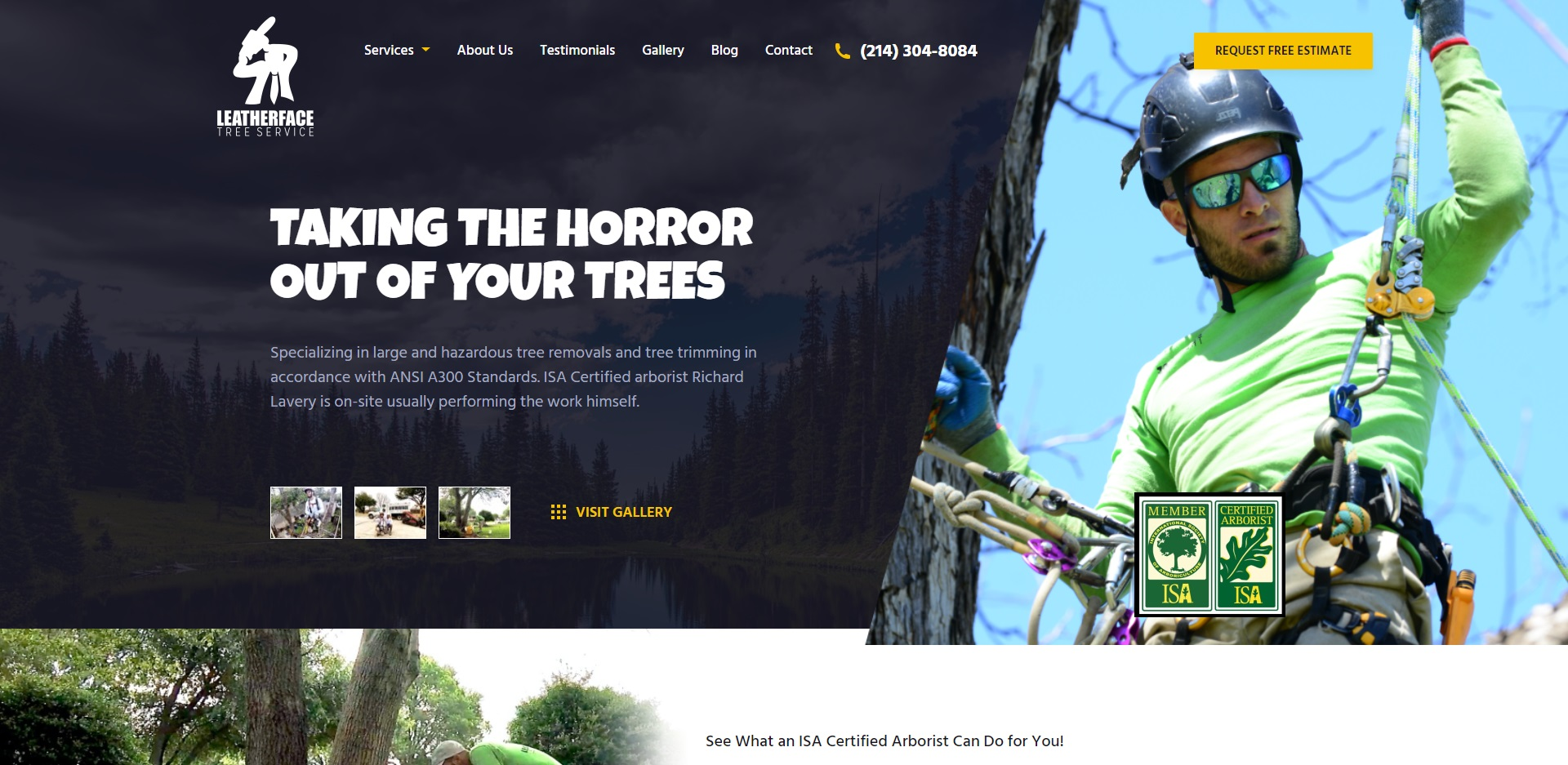 5 Best Arborists in Dallas