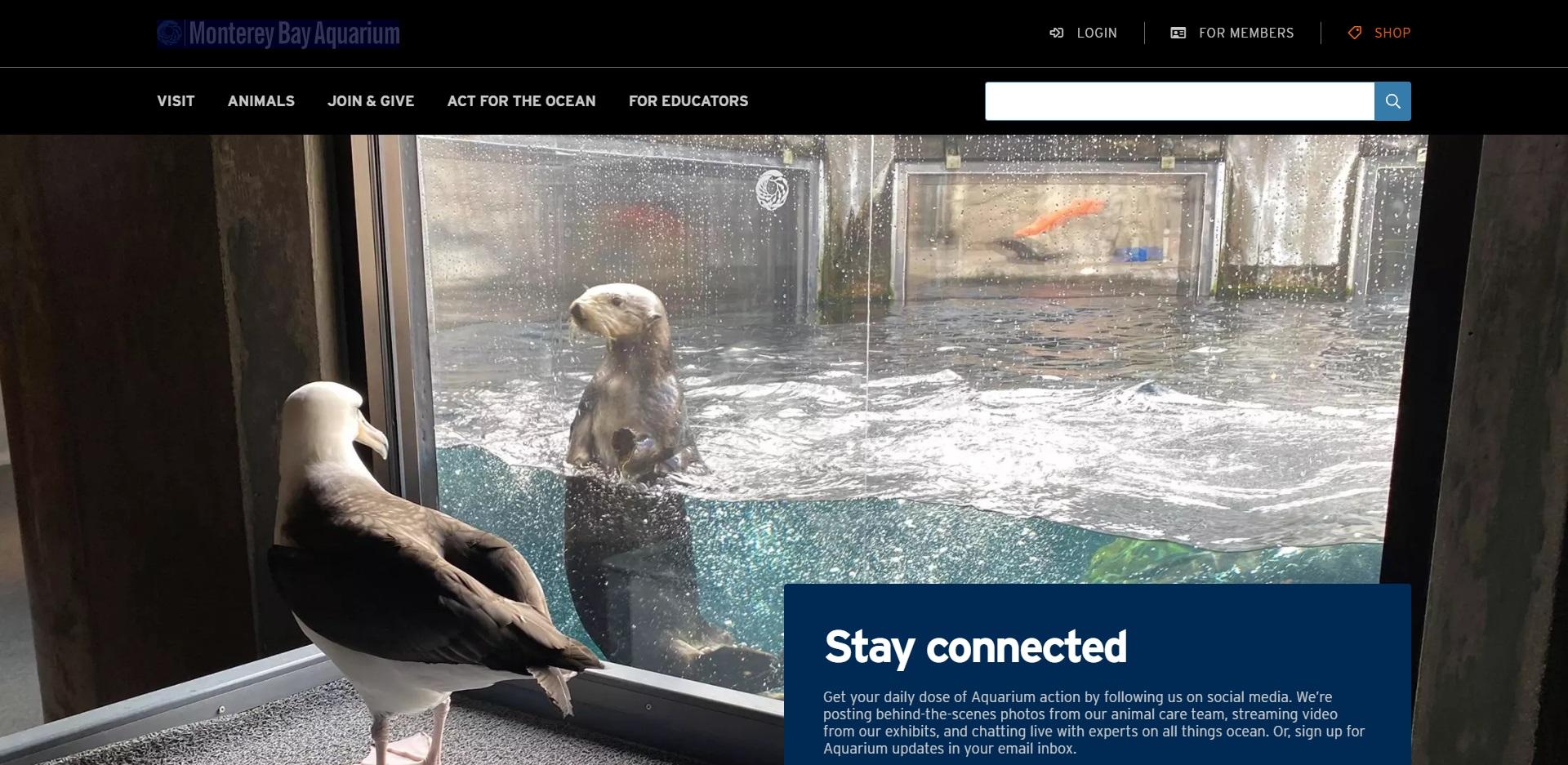 San Jose Best Aquarium/Zoos