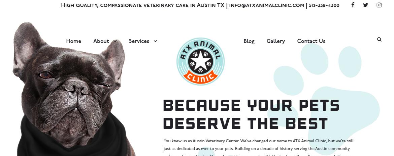 5 Best Veterinarians in Austin5
