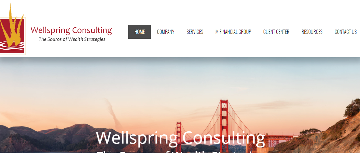 Wellspring Consulting Group
