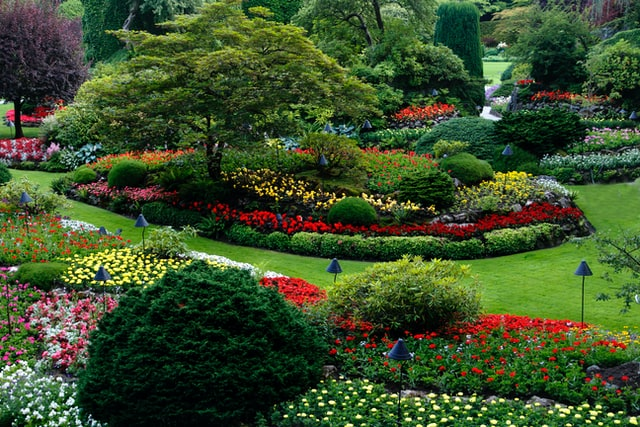 5 Best Landscaping Companies in San Diego