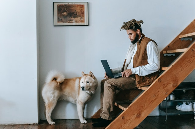 A man sitting on the stairs reading a casual mens lifestyle blog on his laptop with his dog.