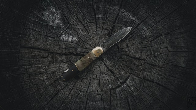 A french knife from an online store lying on a log.