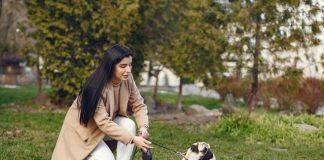 5 Best Dog Walkers in Philadelphia