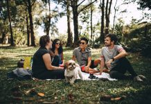 The Top 3 Best Online Stores for Outdoor Picnic and Related Products