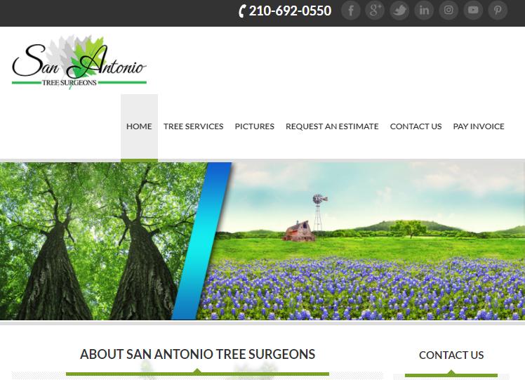 San Antonio Tree Surgeons