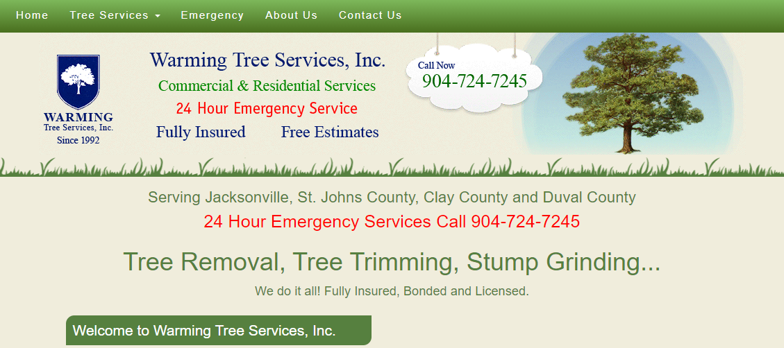 5 Best Tree Services in Jacksonville1