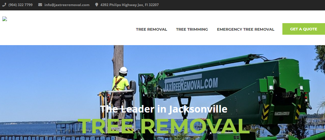 5 Best Tree Services in Jacksonville2