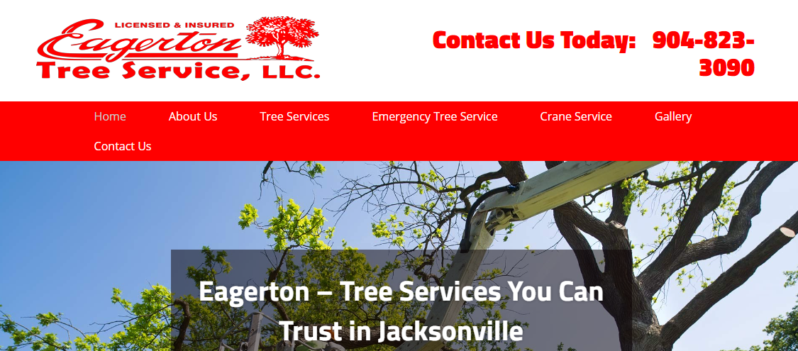 5 Best Tree Services in Jacksonville4