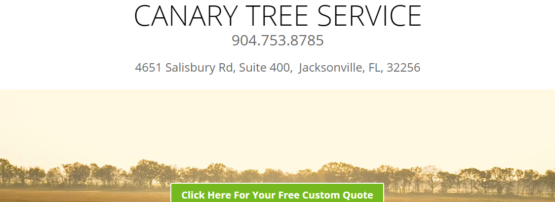 5 Best Tree Services in Jacksonville5