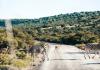 5 Best Bush Walks in San Antonio