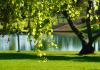 5 Best Parks in San Diego