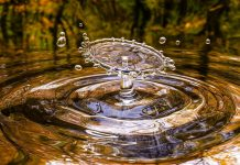 Best Water Purification Services in San Jose, CA