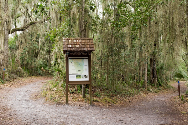 Theodore Roosevelt Area At Timucuan Preserve