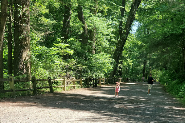 Wissahickon Valley Park