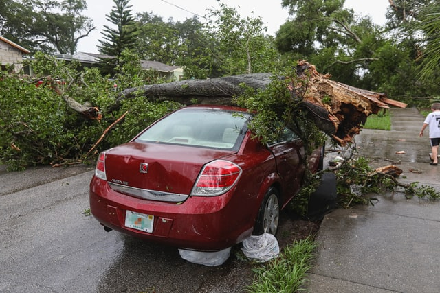 A tree on a car from a hurricane that needs cleanup.
