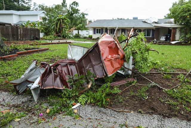 A garden in Orlando needing cleanup after a hurricane.