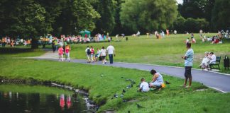 Best Parks in Chicago, IL
