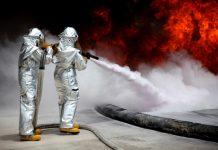 Best Pest Control Companies in Phoenix