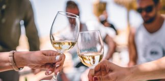 Best North Fork Wine Tours