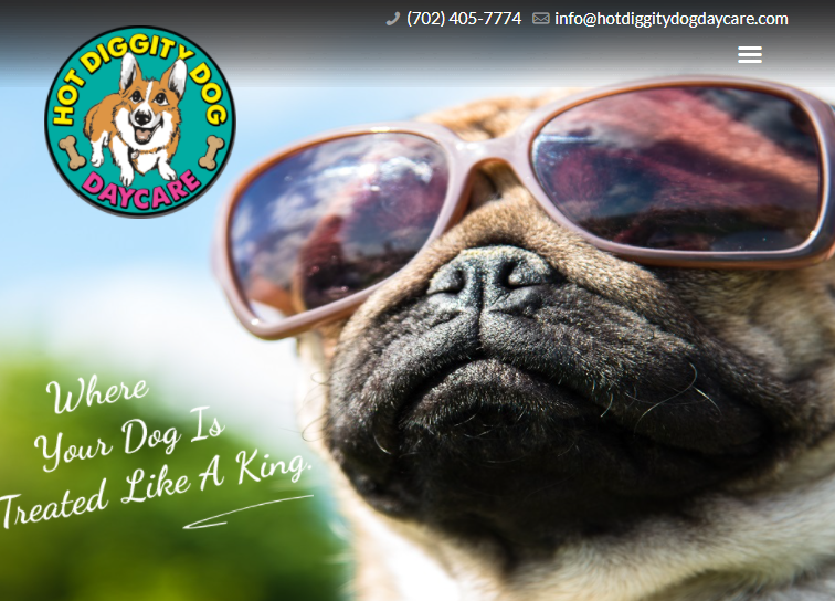 cute Best Doggy Day Care Centre in Las Vegas