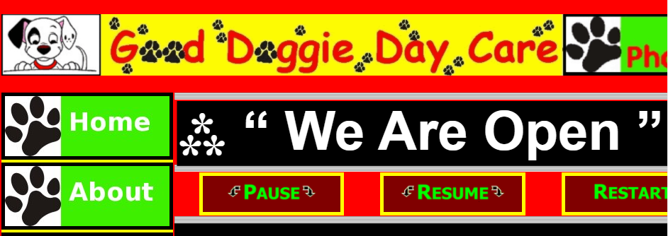 Affordable Dog Day Care Centers in Baltimore
