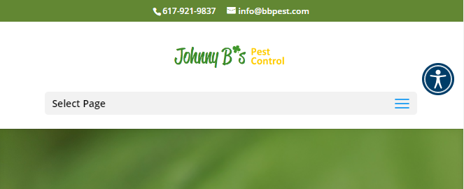 dynamic Pest Control Companies in Boston