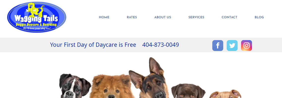 Wagging Tails Doggie Daycare and Boarding Doggy Day Care Centers in Atlanta, GA