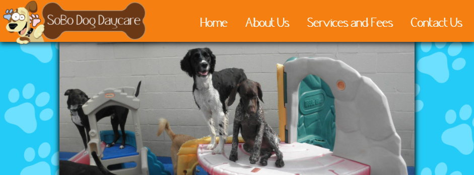 Professional Dog Day Care Centers in Baltimore