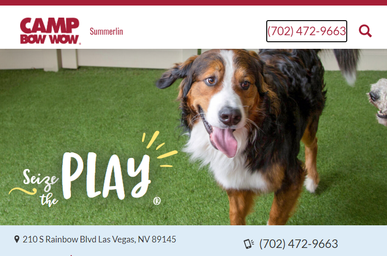 baby Best Doggy Day Care Centre in Las Vegas