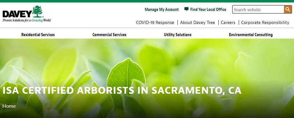 Practical Arborists in Sacramento