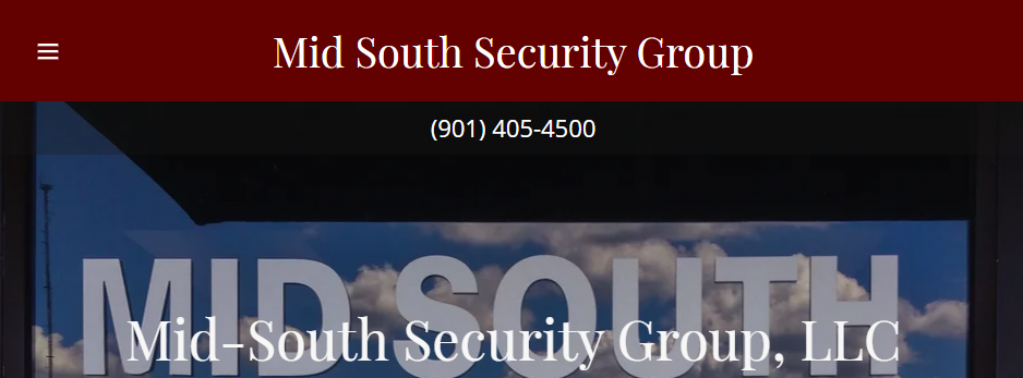 Professional Security Systems in Memphis