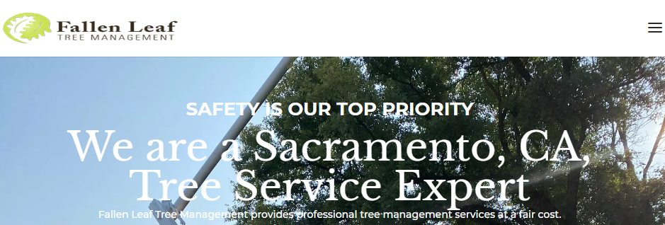 Professional Arborists in Sacramento