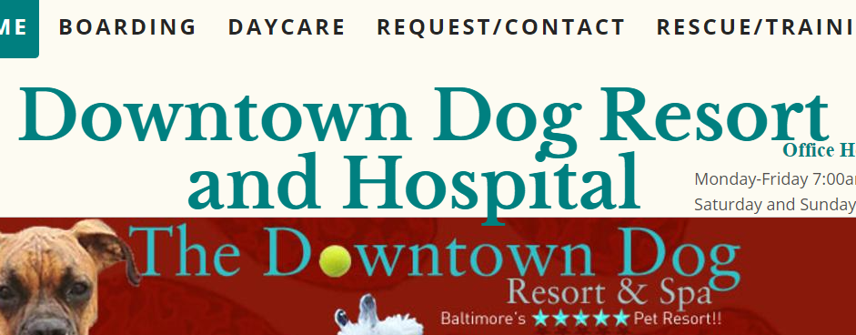 Proficient Dog Day Care Centers in Baltimore